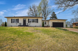 Photo of 8910 Wilma Drive, St Louis, MO 63123-5624 (MLS # 20022510)
