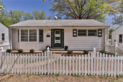 Photo of 802 Lilac Avenue, Webster Groves, MO 63119-4162 (MLS # 20025179)