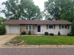 Photo of 1013 Karen Lane, Washington, MO 63090-4907 (MLS # 20029056)