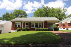 Photo of 7409 Ray Avenue, St Louis, MO 63116-2739 (MLS # 20030412)