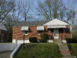 Photo of 3655 Park Lawn Drive, St Louis, MO 63125 (MLS # 20030515)