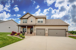 Photo of 36 Nickel Plate Drive, Edwardsville, IL 62025 (MLS # 20033271)