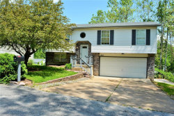 Photo of 907 Guenzler Drive, Imperial, MO 63052 (MLS # 20034720)