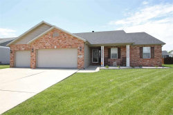 Photo of 1443 Dale Drive, Troy, IL 62294-3615 (MLS # 20035974)