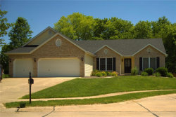 Photo of 25 Sunset Chase, Troy, IL 62294-3231 (MLS # 20036681)