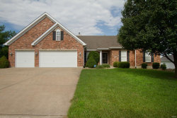 Photo of 705 Westlake Drive, Troy, MO 63379 (MLS # 20040204)