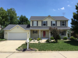 Photo of 1145 Radcliffe Drive, Highland, IL 62249-2766 (MLS # 20041465)