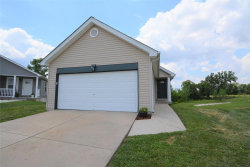 Photo of 330 Almond Tree Court, Troy, MO 63379-5481 (MLS # 20042466)