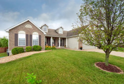 Photo of 4 Chambers Court, O'Fallon, MO 63366 (MLS # 20045153)