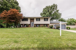 Photo of 907 Long Branch Road, Troy, IL 62294-3131 (MLS # 20045270)