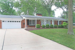 Photo of 10592 Roxanna Drive, St Louis, MO 63128 (MLS # 20048554)