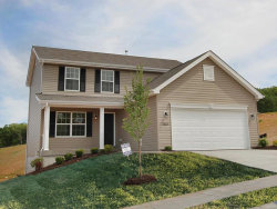 Photo of 3143 Willow Point Drive, Imperial, MO 63052 (MLS # 20049847)