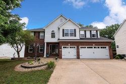 Photo of 3470 Manassas Drive, Edwardsville, IL 62025-3207 (MLS # 20052386)