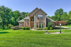 Photo of 112 Oakland Dr, Troy, IL 62294 (MLS # 20055907)