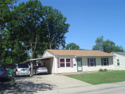 Photo of 2809 Maryville Road, Granite City, IL 62040-6133 (MLS # 20060189)