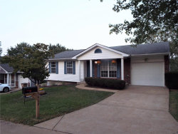 Photo of 5862 Parkmont Drive, Imperial, MO 63052-2160 (MLS # 20063364)
