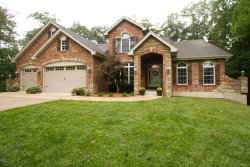 Photo of 61 Old Hickory Lane, Troy, MO 63379 (MLS # 20066260)