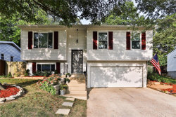 Photo of 3922 Hawthorn Drive, Imperial, MO 63052-1153 (MLS # 20067658)