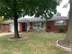 Photo of 945 Willow Street, Wood River, IL 62095 (MLS # 20068105)