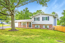 Photo of 1300 Bardot Lane, St Louis, MO 63146-5331 (MLS # 20068691)