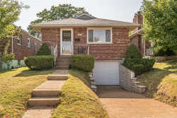 Photo of 4644 Holly Hills Avenue, St Louis, MO 63116-1160 (MLS # 20069841)