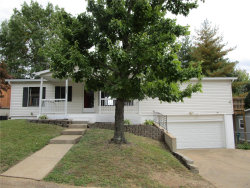 Photo of 1738 Spruce Drive, High Ridge, MO 63049-1867 (MLS # 20071925)