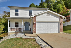 Photo of 139 Country Club Parc Court, Imperial, MO 63052-3626 (MLS # 20072274)