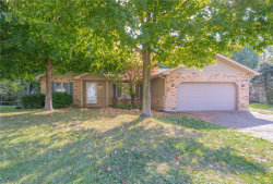 Photo of 704 Andra, Maryville, IL 62062-5788 (MLS # 20073442)