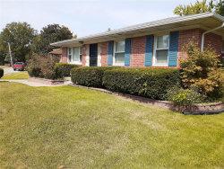 Photo of 8353 Braddock Drive, University City, MO 63132-2706 (MLS # 20074225)