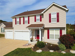 Photo of 1023 William And Mary Court, Barnhart, MO 63012-1171 (MLS # 20074810)