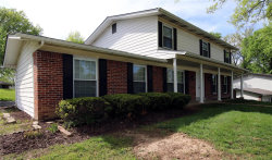 Photo of 919 Fernview Drive, Creve Coeur, MO 63141-6177 (MLS # 20075088)