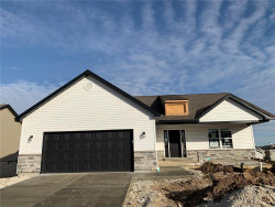 Photo of 313 Delmhorst Dr., Troy, MO 63379 (MLS # 20081142)