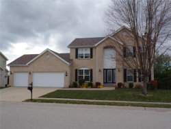 Photo of 6712 Oxford Lane, Maryville, IL 62062 (MLS # 20082105)