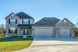Photo of 141 Executive Drive, Troy, MO 63379 (MLS # 20082855)