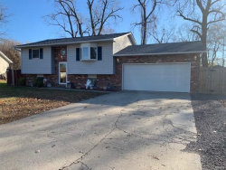 Photo of 5164 Buena, Granite City, IL 62040 (MLS # 20083137)