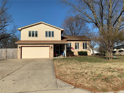 Photo of 101 Chapel Drive, Collinsville, IL 62234-4335 (MLS # 20083692)