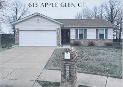 Photo of 613 Apple Glen Court, Arnold, MO 63010-4849 (MLS # 21001738)