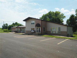 Photo of 3407 South State Route 157, Glen Carbon, IL 62034 (MLS # 17052087)