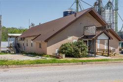 Photo of 127 East Rolla Street, Hartville, MO 65667 (MLS # 20026046)
