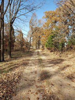 Photo of 8109 Highway Jj North, Mountain Grove, MO 65711 (MLS # 19083593)