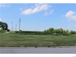 Photo of 90 N. Harvest Crest Ct., Highland, IL 62249 (MLS # 17058063)