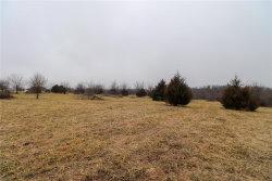 Photo of 16620 Nikon, Phillipsburg, MO 65722 (MLS # 19003414)