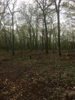 Photo of 23255 Hwy T , Unit 7, Waynesville, MO 65583 (MLS # 20027289)
