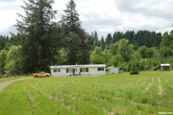 Photo of 437 Victor Point Rd NE, Silverton, OR 97381 (MLS # 704672)