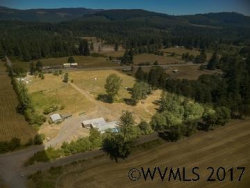 Photo of 46126 Lyons Mill City Dr, Lyons, OR 97358 (MLS # 722407)