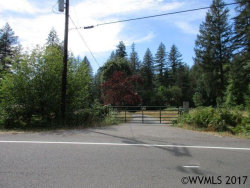Photo of 32325 North Fork Rd SE, Lyons, OR 97358 (MLS # 723448)