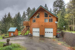 Photo of 21560 SW Tunder Ln, McMinnville, OR 97128 (MLS # 732088)
