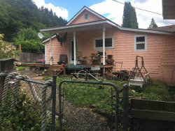 Photo of 282 W Main St, Alsea, OR 97324 (MLS # 734543)