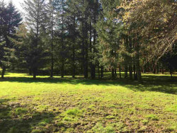 Photo of James Way Drive Dr, Aumsville, OR 97325 (MLS # 737034)