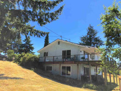 Photo of 17282 NE Mt Angel Scotts Mills Rd, Silverton, OR 97381 (MLS # 738228)